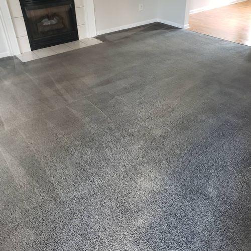 Carpet Dyed