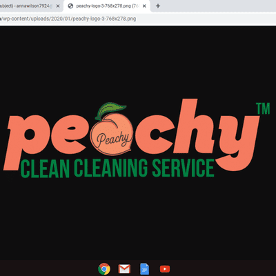 Avatar for Peachy clean cleaning service Palm Bay, FL Thumbtack