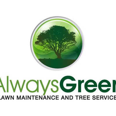 Avatar for Always Green Dallas, TX Thumbtack