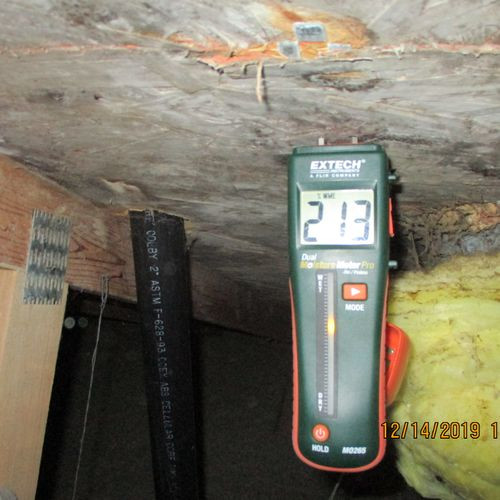 attic sheathing with mold