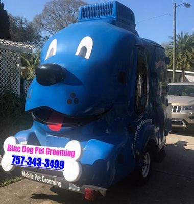 Avatar for Blue Dog Mobile Pet Grooming