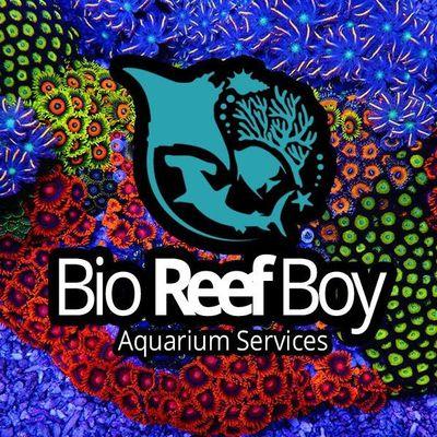 Avatar for Bio Reef Boy Aquarium Services Corp