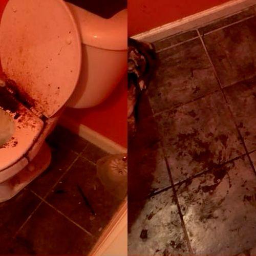Hoarder bathroom before