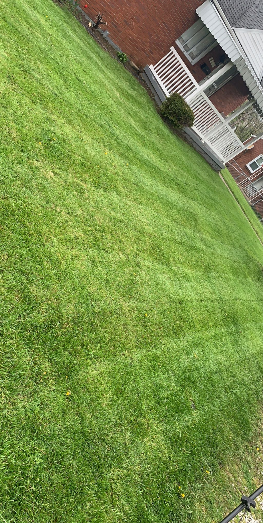 Created Images Lawns and Landscapes