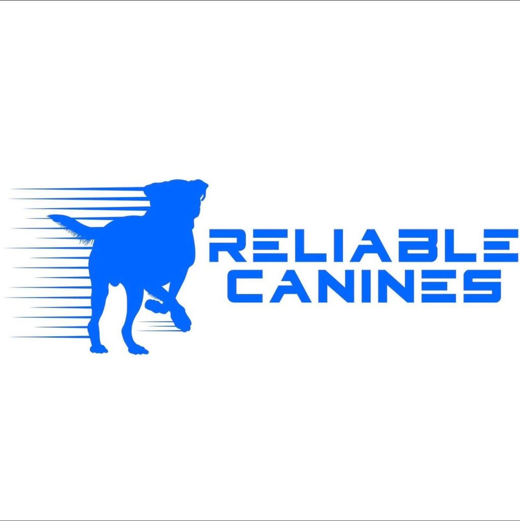 Reliable Canines