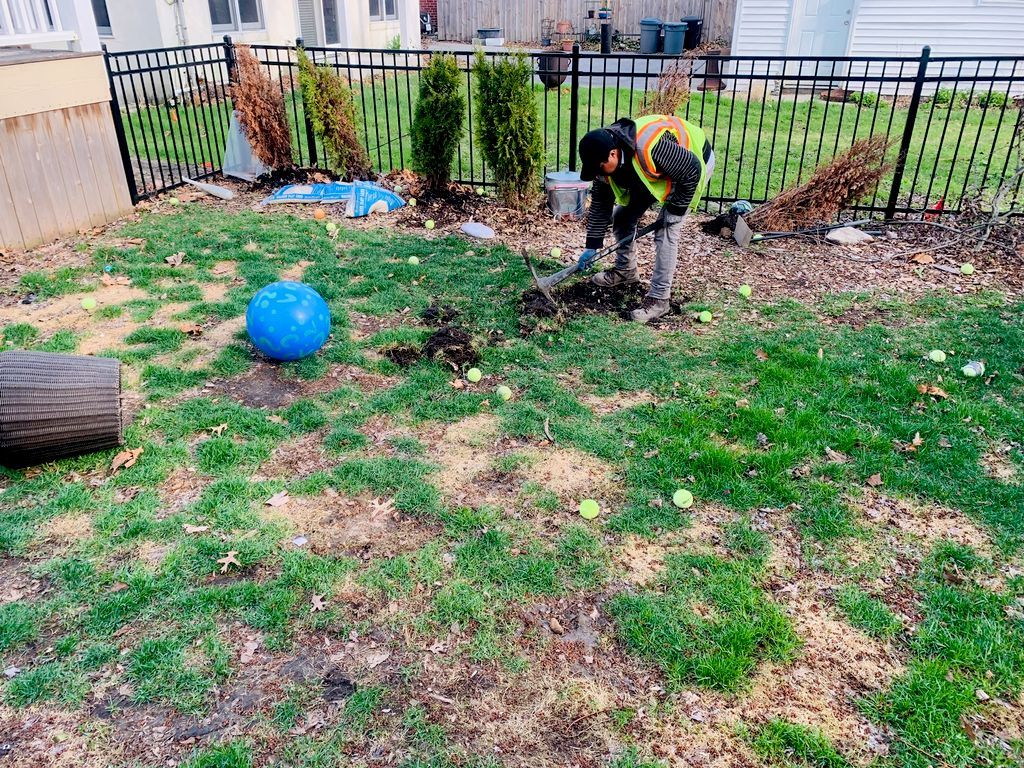 Hardscape and sod install