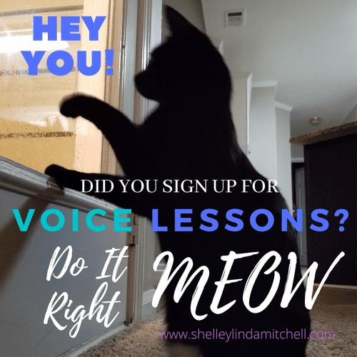 Online Voice Lesson PROMO