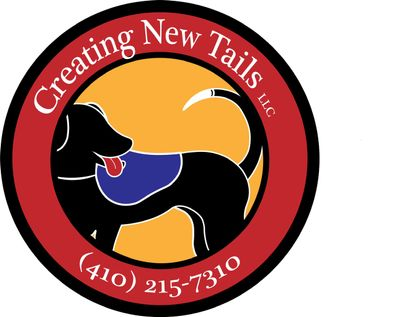 Avatar for Creating New Tails, LLC Hollywood, FL Thumbtack