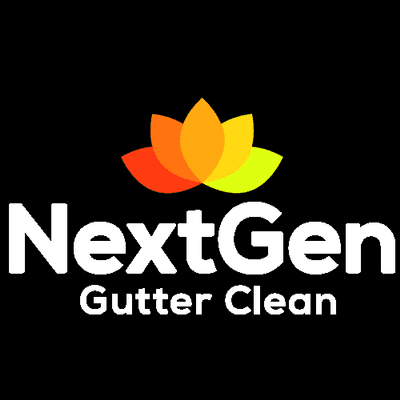 Avatar for NextGen Gutter Clean
