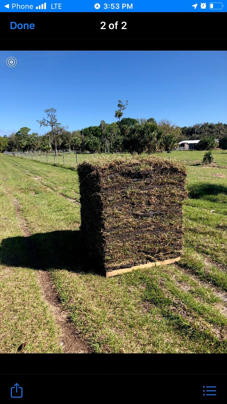 General sod and landscaping