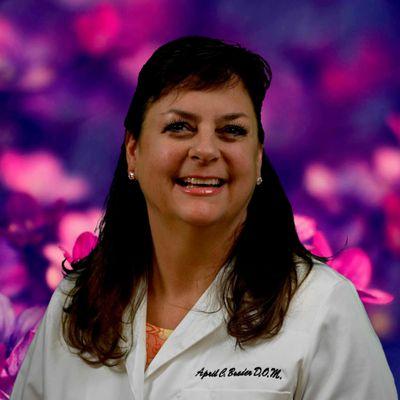 Avatar for April Brader, DOM Acupuncturist & Herbalist