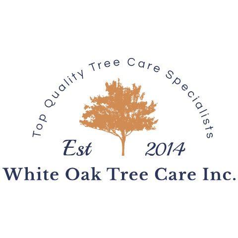 White Oak Tree Care