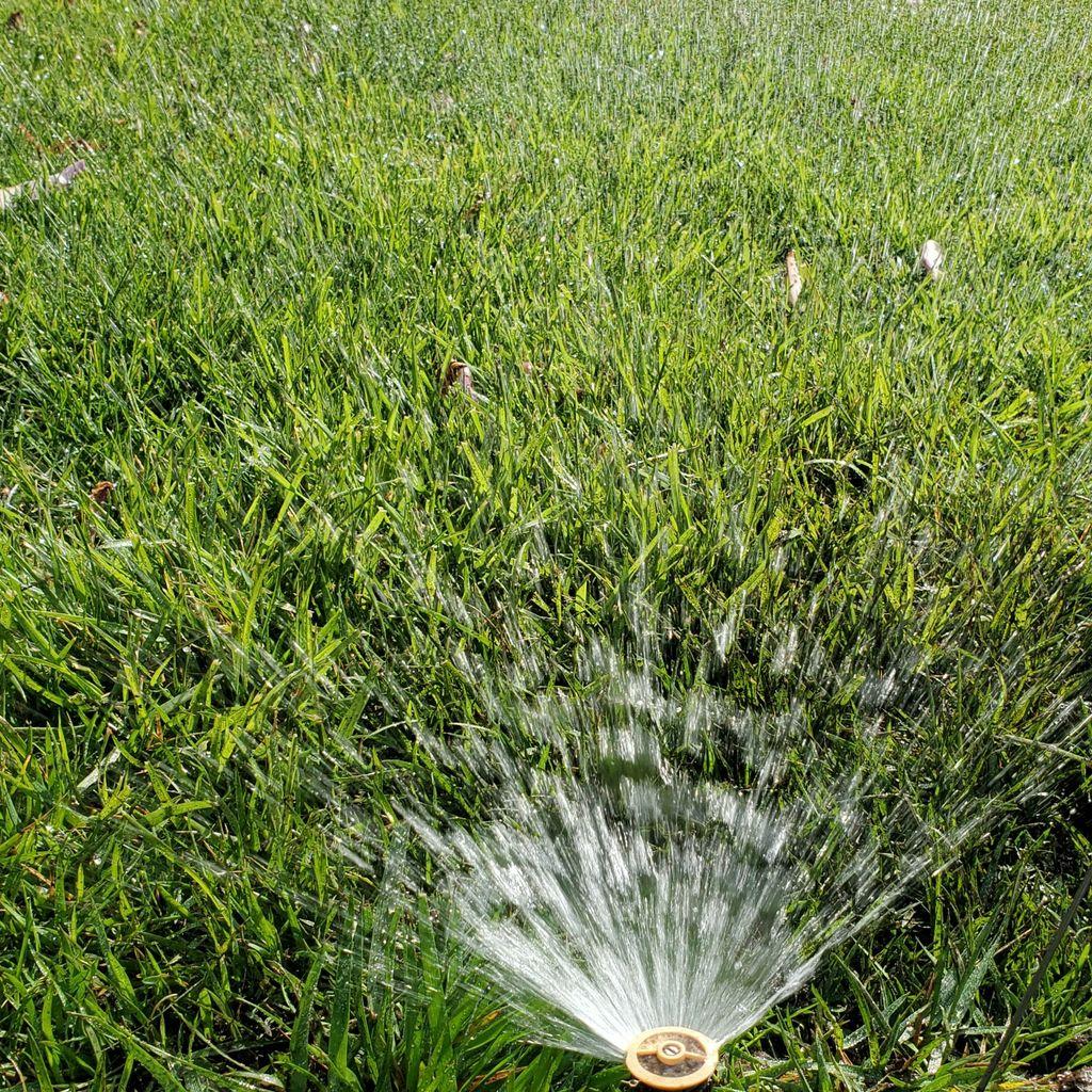 fredy Morales lawn sprinklers