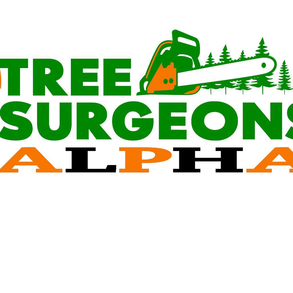 Tree surgeons alpha LLC