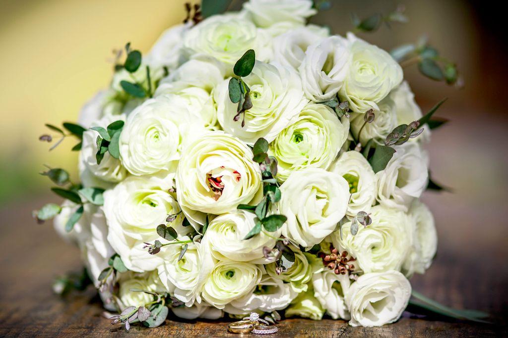 Wedding - Proposal - Engagement