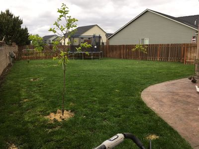 Avatar for Alex's landscaping Woodburn, OR Thumbtack