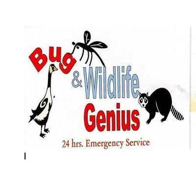 Avatar for Bugs And Wildlife Genius Cleveland, OH Thumbtack