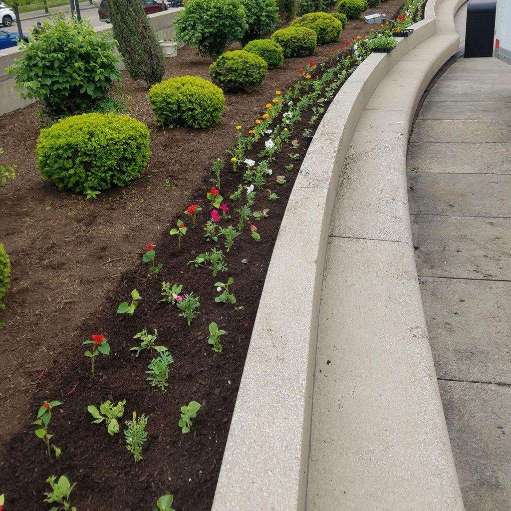 DiCillo Landscape Design Inc.