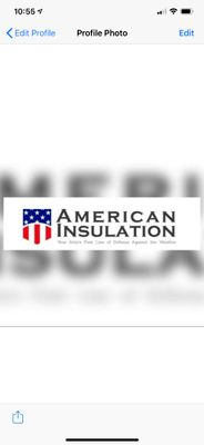Avatar for American Insulation