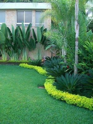 Avatar for The brothers tree and landscaping Miami, FL Thumbtack