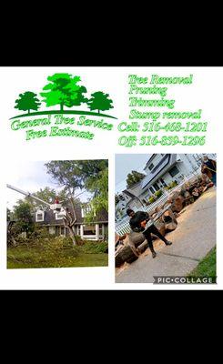 Avatar for General tree service Freeport, NY Thumbtack