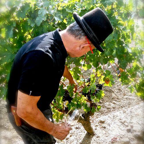 Un viticulteur en Touraine