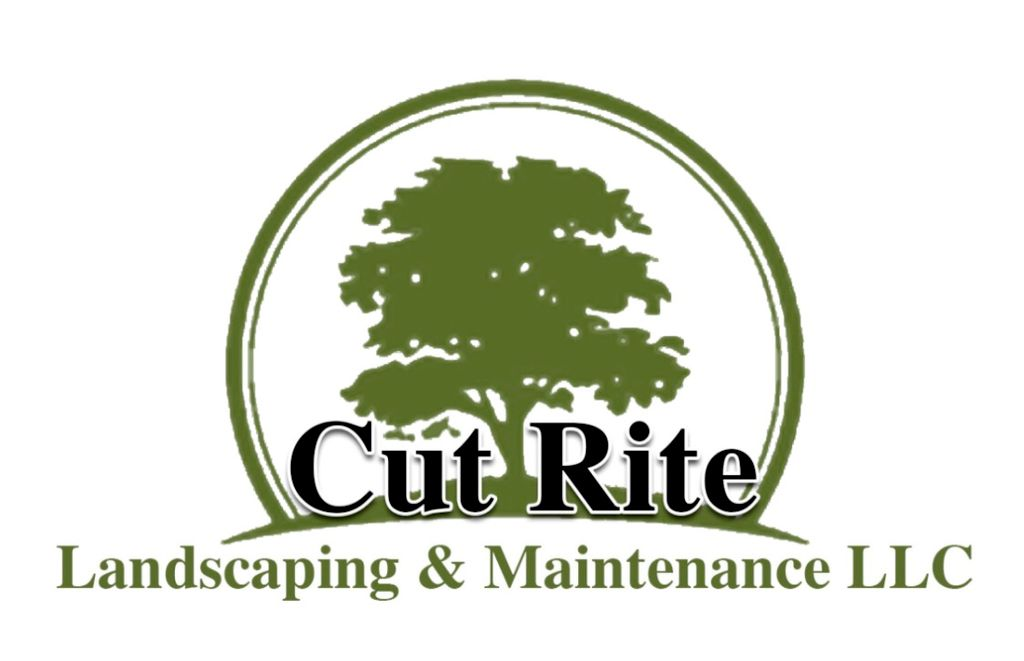 Cut Rite Tree Services