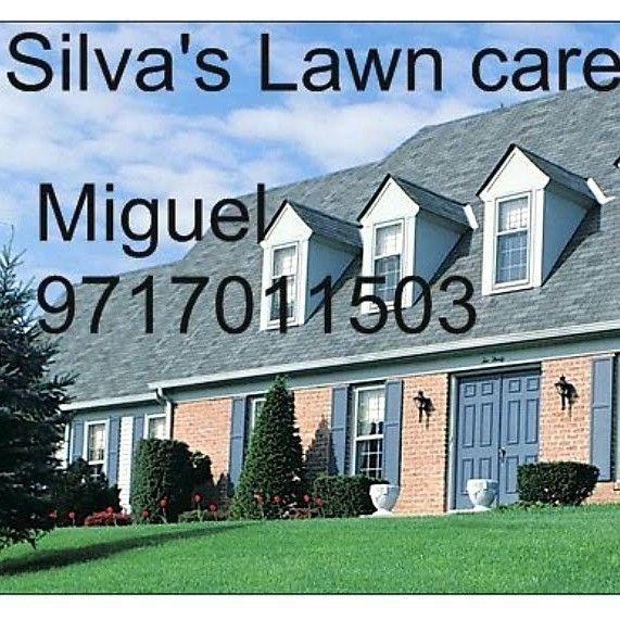 Silva's Lawn care