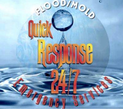 Avatar for Quick Response 24/7 Flood & Mold Damage