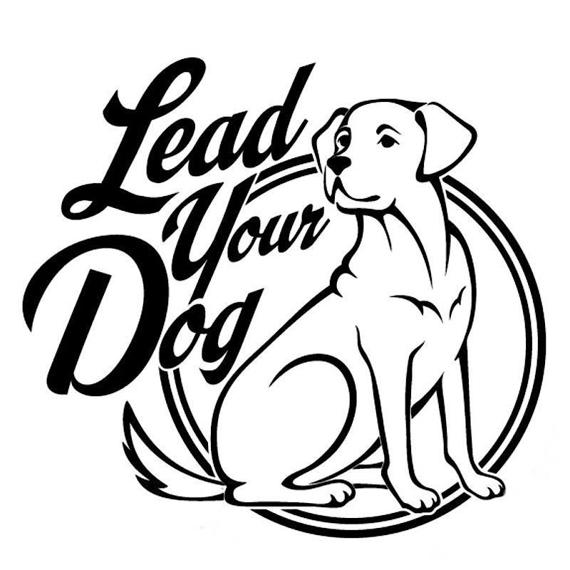 Lead Your Dog