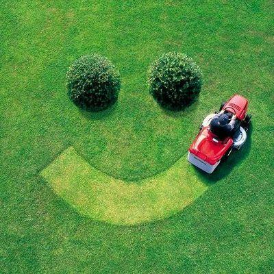 Avatar for Create My Lawn LLC