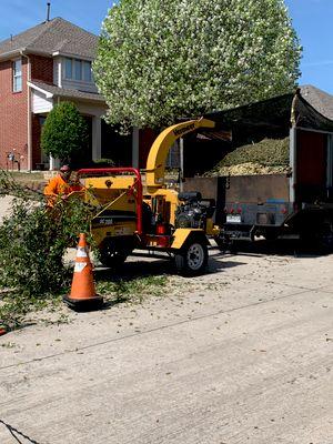 Avatar for Hernandez Tree Service