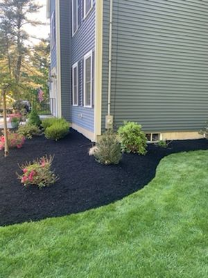 Avatar for Parada Landscaping