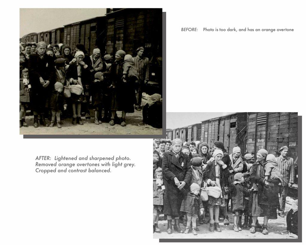 Halocaust Book Photo editing