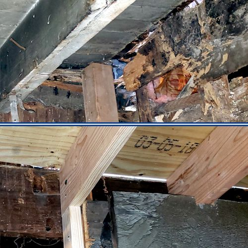 Termite damage Before & After