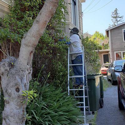 Avatar for Gardening Cruz