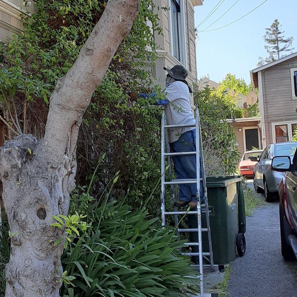 Gardening Cruz