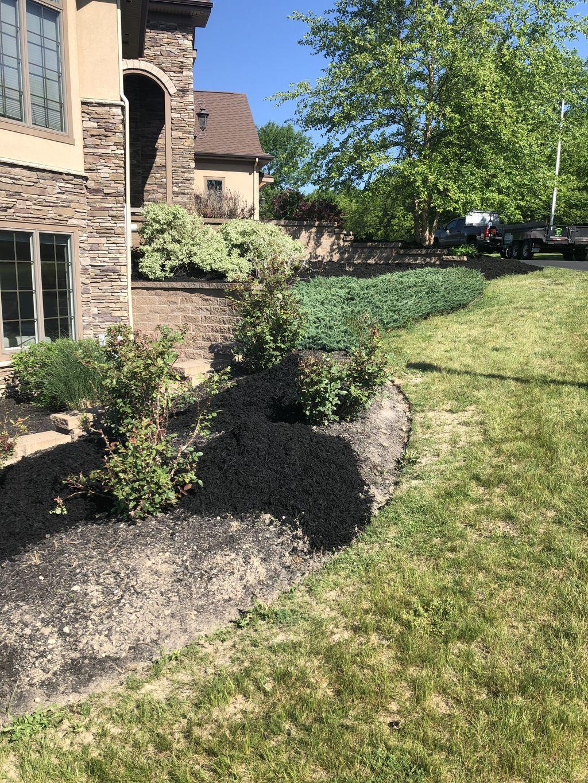 50 cubic yard mulch install and trim