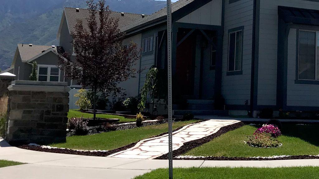 walk way and front yard