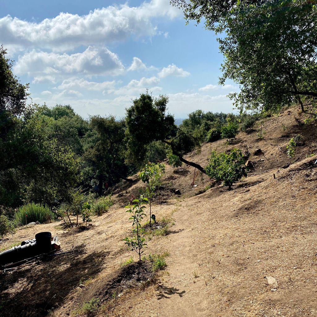 Munoz landscaping