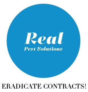 Avatar for Real Pest Solutions