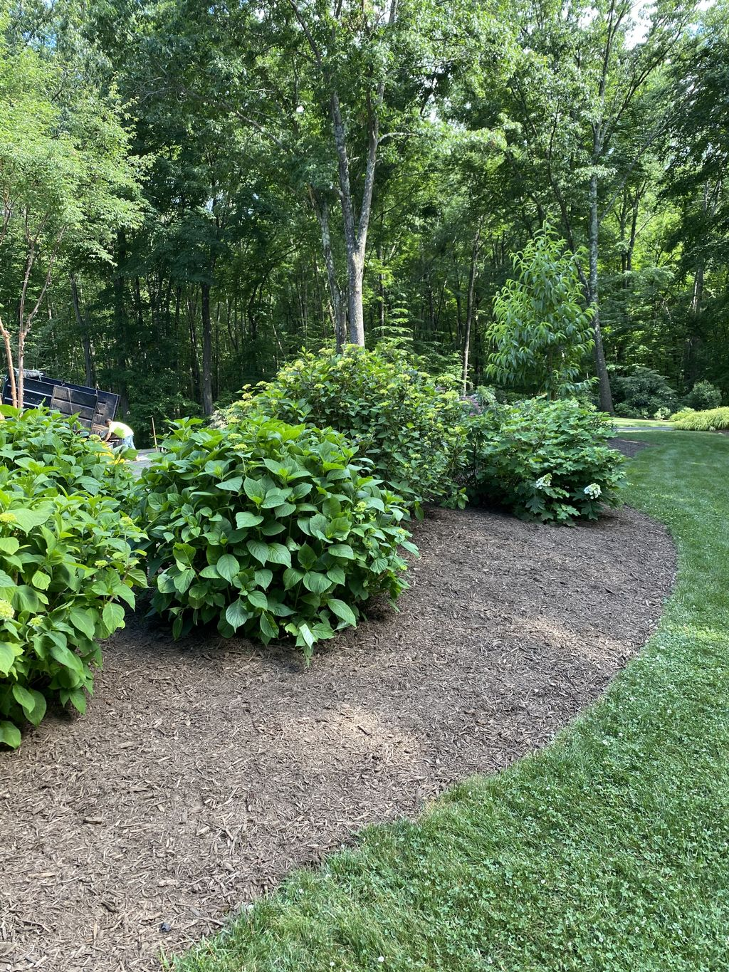 Outdoor Landscaping and Design - Moodus 2020