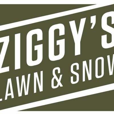 Avatar for Ziggys Lawn and Snow