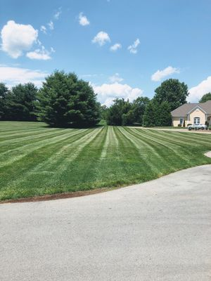 Avatar for MOW-RIGHT  LAWN & LANDSCAPING