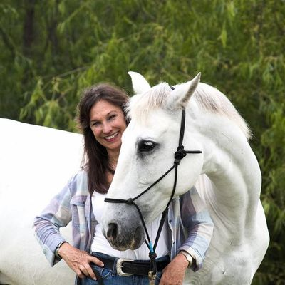 Avatar for Debbie Lewis Riding Lessons