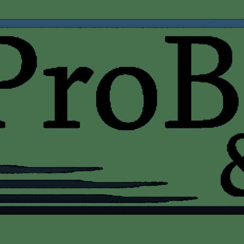 ePro Books & Taxes, llc