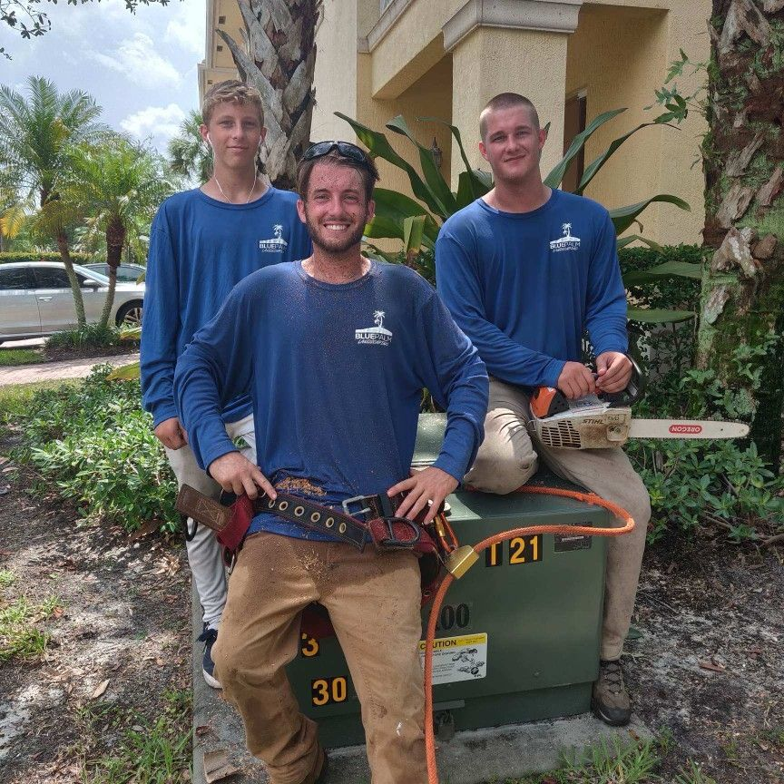 Blue Palm Landscaping