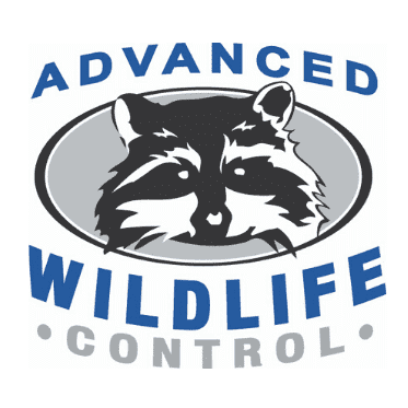 Avatar for Advanced Wildlife Control