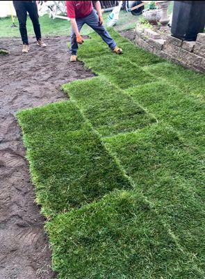 Avatar for Daniel's landscaping