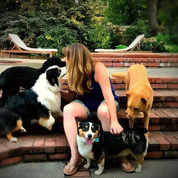 The ORIGINAL Thinking Dogs